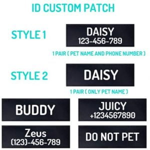 Personalized Harness No Pull