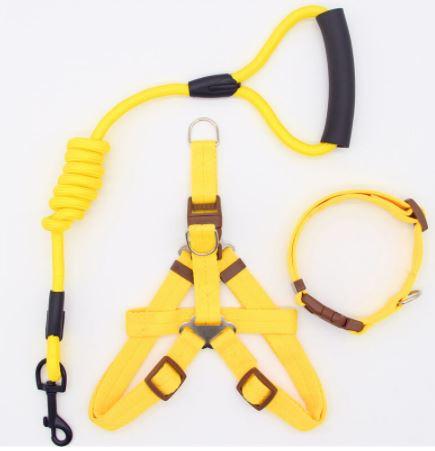 Pet Buckle Collars Set