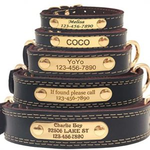 Custom Leather Dog Collar Name ID