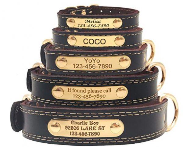 Custom Leather Dog Collar Name ID