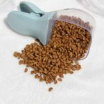Pet Food Spoon For Dog Bowls