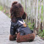 Eagle Pattern Dog Leather Jacket