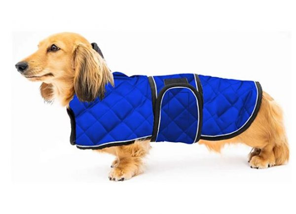Warm Thermal Quilted Dachshund Coat