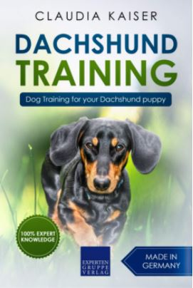 Dog Training for your Dachshund puppy