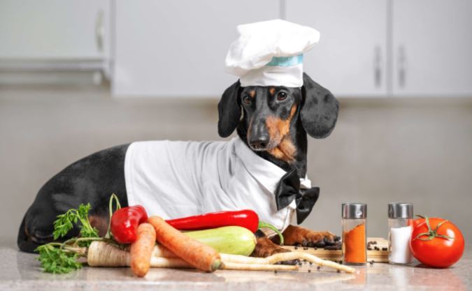 The 7 Best Wet Dog Foods for Healthier Pets